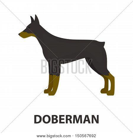 Doberman rastr illustration icon in cartoon design