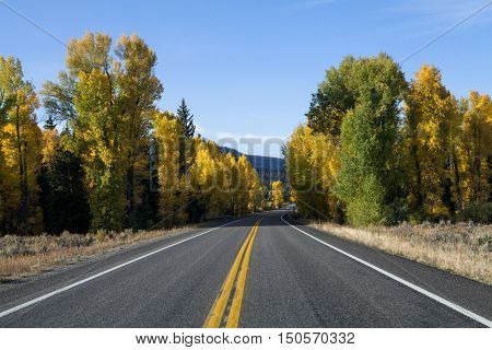 The road through the Grand Teton National Park