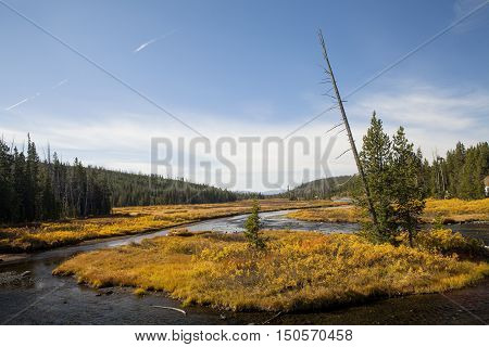 A river in the Grand Teton National Park