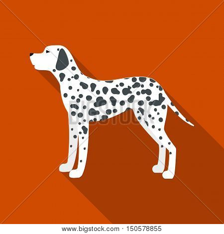 Dalmatian raster illustration icon in flat design
