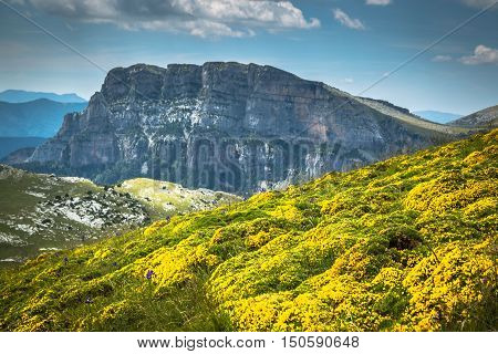 Pyrenees Mountains landscape - Anisclo Canyon in summer. HuescaSpain