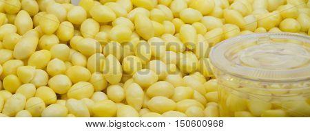 ginkgo seeds , beautiful  Ginkgo nuts background.
