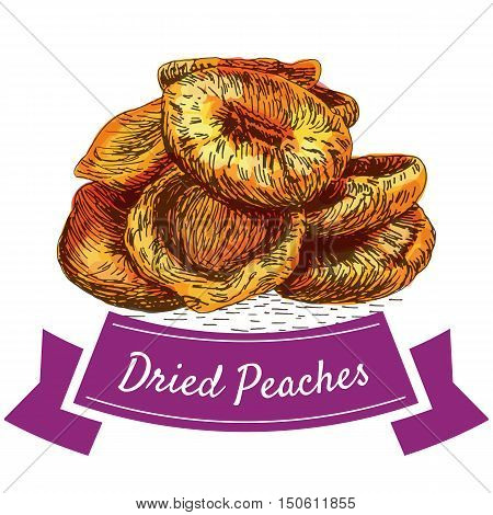 Dried peaches colorful illustration. Vector illustration of dried peaches.