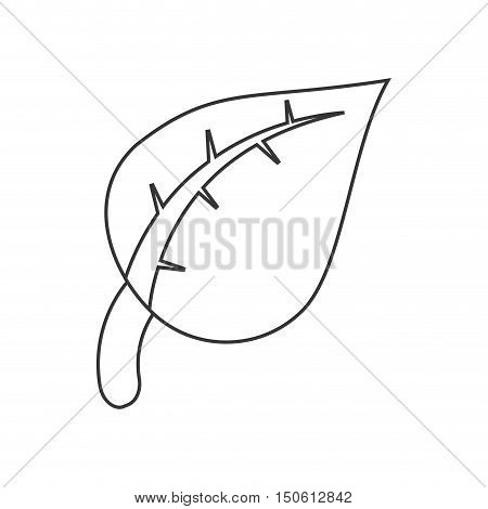 leaf plant icon. Ecology renewable and conservation theme. Isolated design. Vector illustration