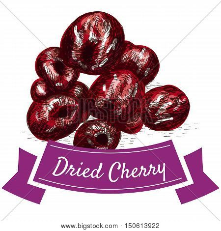 Dried cherry colorful illustration. Vector illustration of dried cherry.
