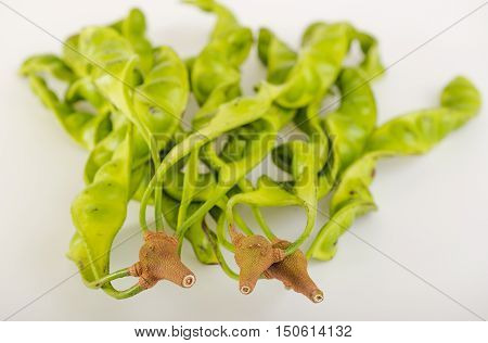 sato southern Thailand vegetable on white background