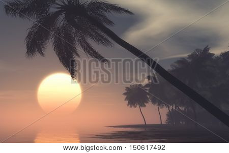 Sunset on foggy morning at the tropical island . This is a 3d render illustration