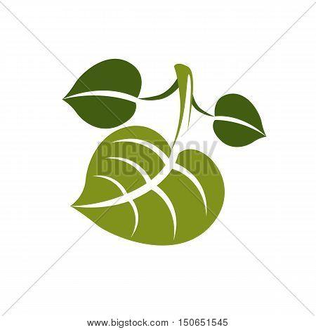 Spring Leaf Simple Vector Icon, Nature And Gardening Theme Illustration. Stylized Tree Leaf, Botany