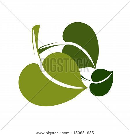 Two Simple Vector Green Deciduous Tree Leaves, Stylized Nature Element. Ecology Symbol, Can Be Used