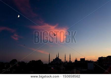 Twilight urban View of historical District of Istanbul City. Silhouettes of Sultan Ahmed Blue Mosque minor Buildings blue Sky and Sunset orange Clouds Moon Middle Phase in the corner Sea Gulls flying