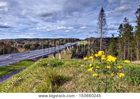 Viaduct bridge on highway that crosses Russian forest sunny day.