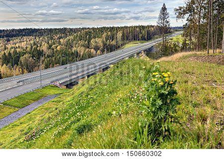 Steel girder bridge viaduct on freeway that crosses woods sunny daytime.