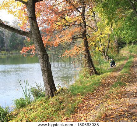 Autumn landscape with trees / fisherman in autumn park on bank of pond with fishing rod