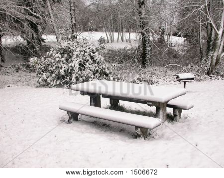 Wintery Pic-Nic Table