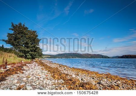 Shoreline on the Kyles of Bute, also known as Argyll's Secret Coast in the Firth of Clyde, seen here just south of villages Kames and Tighnabruaich