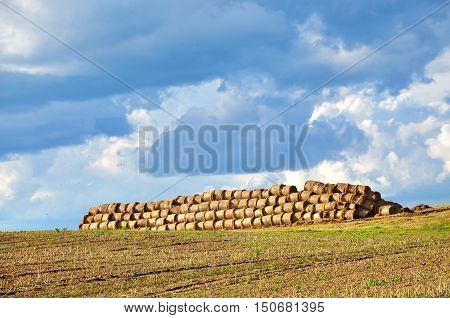 Agricultural field with a pile of haystacks on a background of blue sky with clouds.