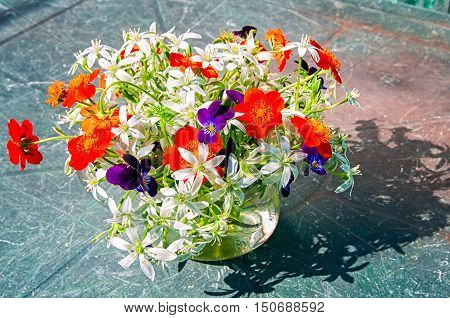 Ornithogalum and pansies bouquet with shadow on the table