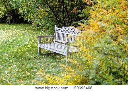 A Wooden Bench Stands In The Garden Among The Autumn Yellow And Green Trees.