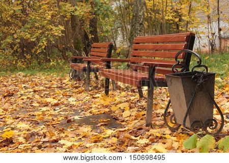 two brown wooden benches in the garden