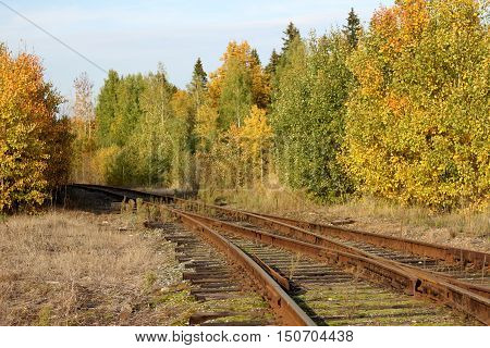 abandoned railway in autumn forest, leaf fall, road to nowhere