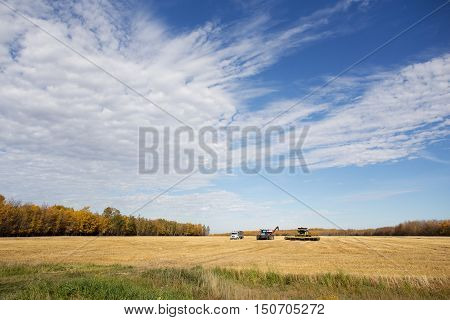 Agriculture equipment parked in a row on a harvested field surrounded by forest of trees in rural autumn landscape in saskatchewan