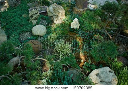 Japanese garden with stones, figurines and different types of plants