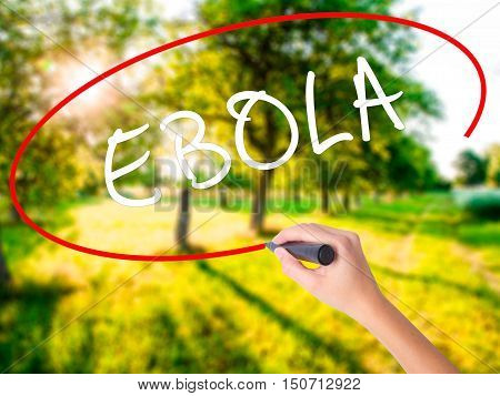 Woman Hand Writing Ebola With A Marker Over Transparent Board