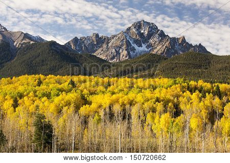 Fall image of Mt. Sneffels in the San Juan Mountains of Southern Colorado