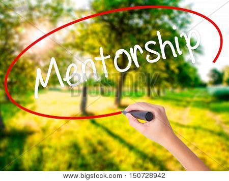 Woman Hand Writing Mentorship  With A Marker Over Transparent Board