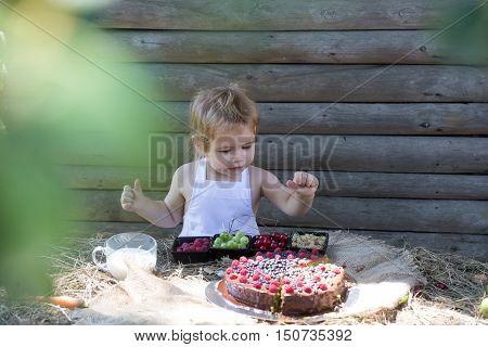 Cute Little Boy Eats Berries