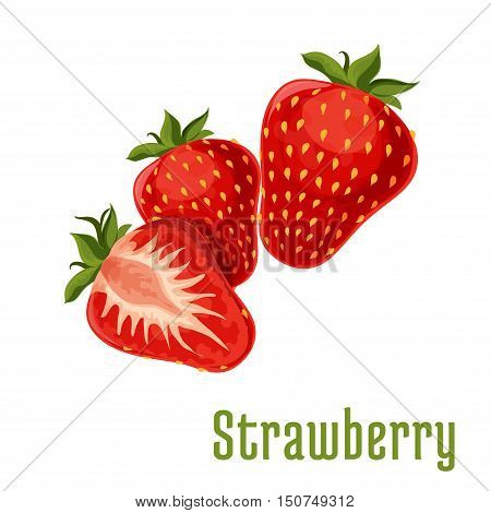Strawberry fruits. Isolated bunch of strawberries on stem with leaves. Botanical product emblem for juice or jam label, packaging sticker, grocery shop tag, farm store