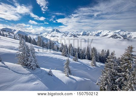 Trees Covered By Fresh Snow In Alpine Mountains - Austria From Kitzbuehel Ski Resort - One Of The Be