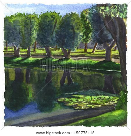 Watercolor illustration of a silent lake in the park some trees under the sun light. Hand made painting.