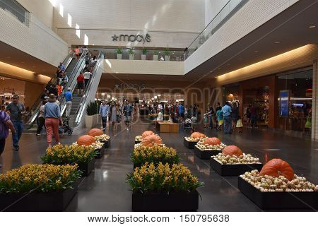 DALLAS, TX - SEP 17: Halloween decor at NorthPark Center in Dallas, Texas, as seen on Sep 17, 2016. The center has over 235 stores and is the first shopping center featured on Vogue Magazine.