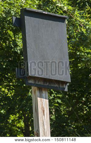 Wooden black painted bat shelter on wooden pole