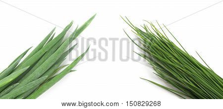 Types of Spring Onions isolated on white background