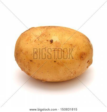 Potato isolated on white background. One, yellow.