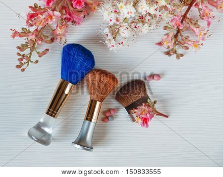 There White and Pink  Branches of Chestnut Tree,Two Make Up Brown and One Blue Brushes are on White Table,Top View