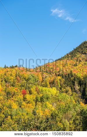 Autumn colors on Chic-Chocs mountains in Gaspesie Quebec Canada.