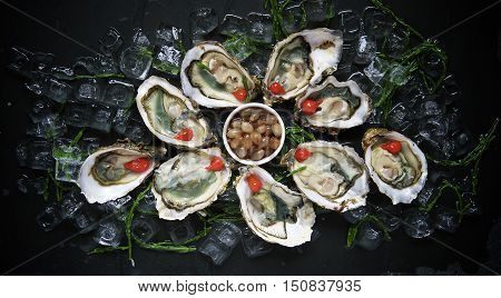 Iced Raw Chilled Appetizer Platter in Luxury Seafood Restaurant
