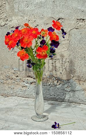 bouquet of pansies and orange flowers near the concrete wall