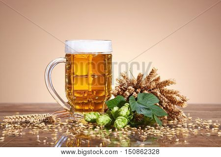 A glass of beer with a fresh, foamy beer in a glass mug, ears of wheat, ripe fruit hops, brewing ingredients