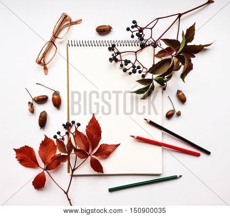 Autumn composition with sketchbook pencils and glasses on white background decorated with red leaves and berries of virginia creeper. Flat lay top view view from above