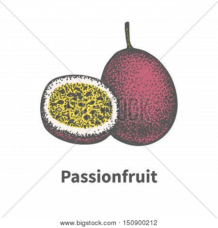 Vector illustration doodle sketch hand-drawn ripe juicy passionfruit and cut a piece half. Isolated on white background. The concept of harvesting. Vintage retro style.