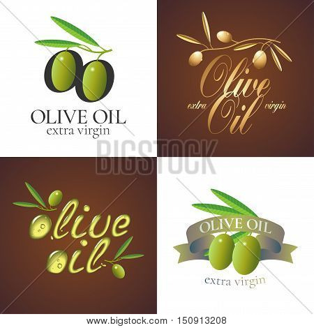 Olive oil vector illustration, background, label, sticker. Template design element with olive tree branch and green olives