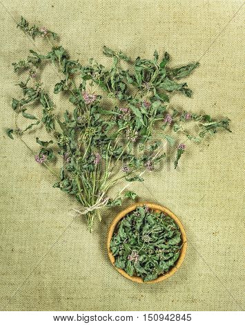 Mint spearmint peppermint. Dried herbs for use in alternative medicine spa herbal cosmetics herbal medicine preparing infusions decoctions tinctures powders ointments butter tea bath.