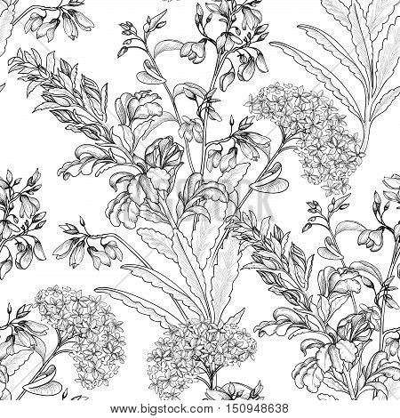 Floral seamless pattern. Flower etching background. Floral sketch seamless texture with flowers. Flourish engraving tiled wallpaper