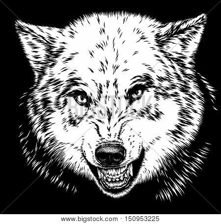 engrave isolated wolf illustration sketch. linear art