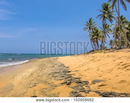 The wild and remote Playa Rincon near Las Galeras in Samana Peninsula. The spectacular, wild and remote Caribbean beach of Playa Rincon is one of the most beautiful in Dominican Republic.
