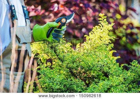 Gardener with Garden Snips Preparing For Garden Work.